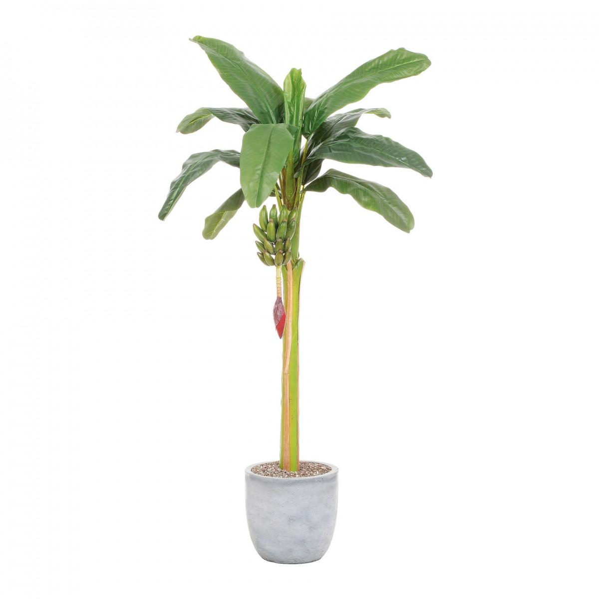 bananenbaum kunstpflanze 180cm staude im topf ebay. Black Bedroom Furniture Sets. Home Design Ideas