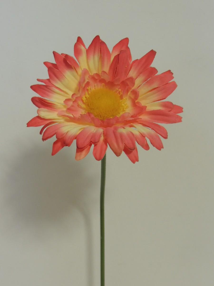k nstliche gerbera creme rose 60 cm lang kunst seidenpflanze kaufen bei. Black Bedroom Furniture Sets. Home Design Ideas