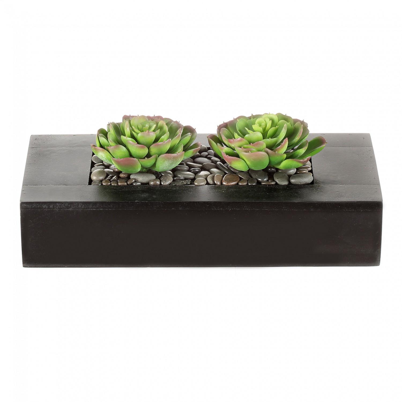 Holzkasten mit künstlichen Echeveria 24x8cm