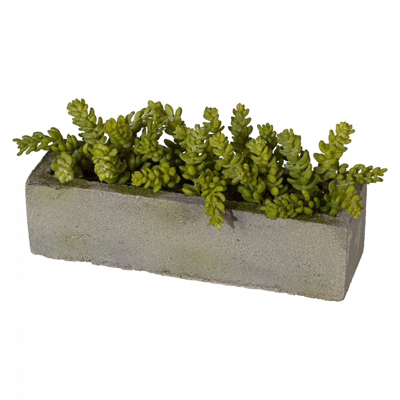 Sedum Fetthenne Kunstpflanze im Zementkasten