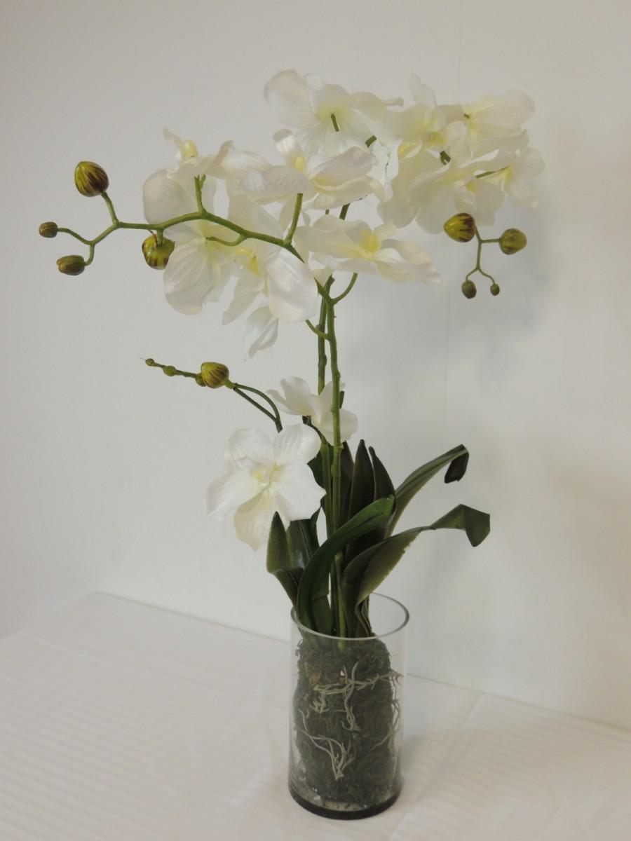 orchidee im glaszylinder kunst seidenblume in wei 55 cm hoch kunstpflanzen bl hende pflanzen. Black Bedroom Furniture Sets. Home Design Ideas